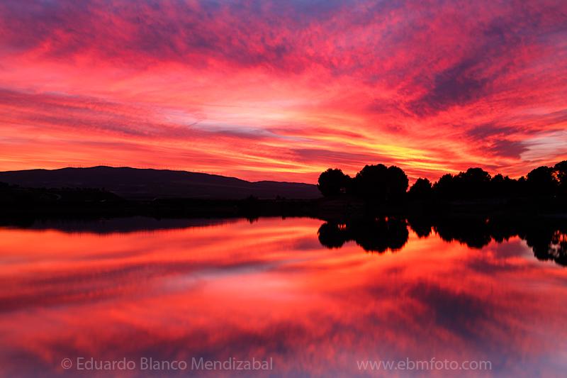 rojo rosa agua