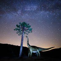 ebm-2903amazing-arbol-fosil-igea-country-dinosaurios-fotografia-nocturna-igea-la-rioja-milky-way-pinaceae-spain-travel-valle-del-alhama-riojano-via-lactea