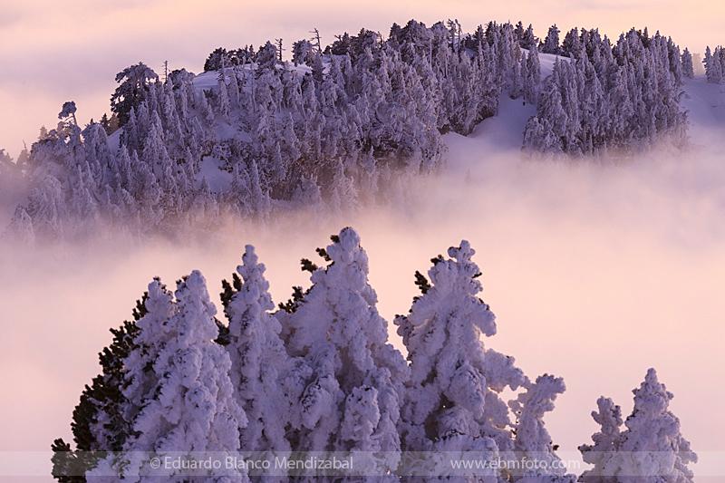 fotografia invierno frio