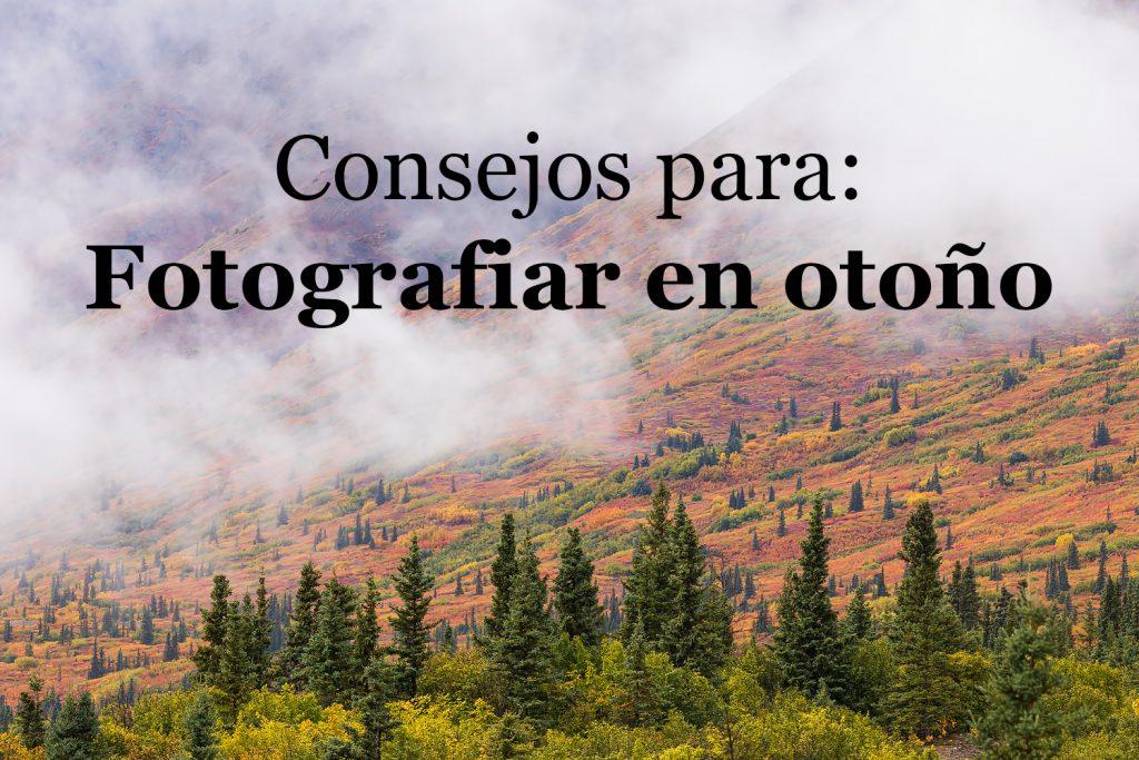 Consejos para fotografiar en otoño